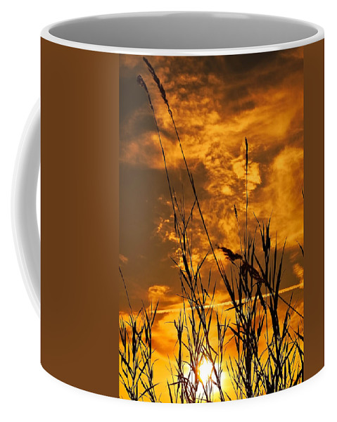 Background Coffee Mug featuring the photograph Evening Grass by Svetlana Sewell