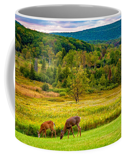 Canaan Valley Coffee Mug featuring the photograph Evening In The Valley 2 by Steve Harrington