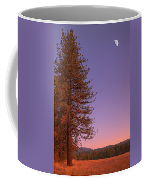Valley Coffee Mug featuring the photograph Evening In The Valley by Mick Burkey