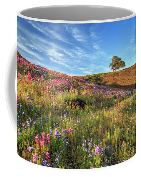 Spring Coffee Mug featuring the photograph Evening Light At North Table Mountain by James Eddy