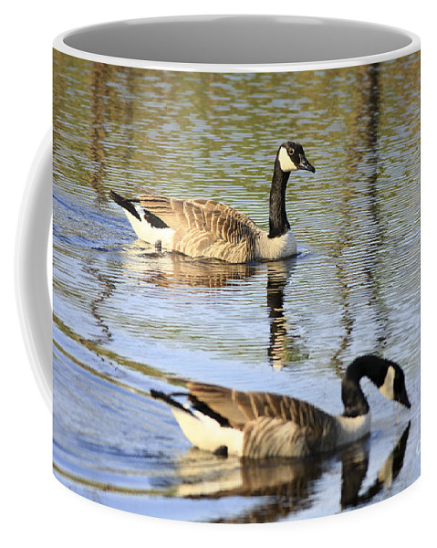 Geese Coffee Mug featuring the photograph Evening Light On Nature by Deborah Benoit