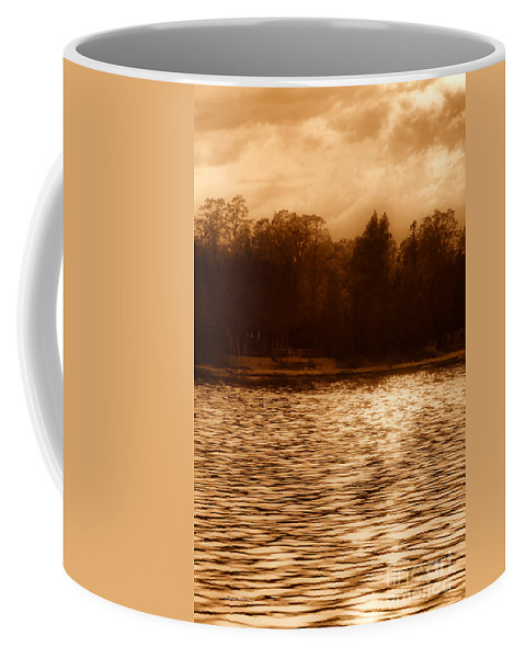 Lake Coffee Mug featuring the photograph Evening On The New York Shore by Deborah Benoit