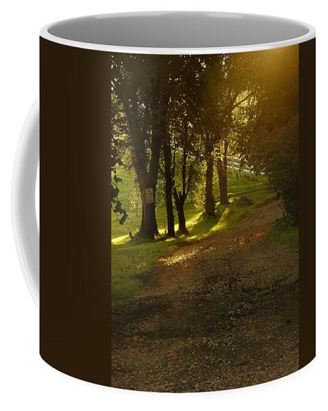 Landscape Coffee Mug featuring the photograph Evening Path by Steve Karol