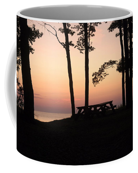 Landscape Coffee Mug featuring the photograph Evening Picnic by Michael Peychich