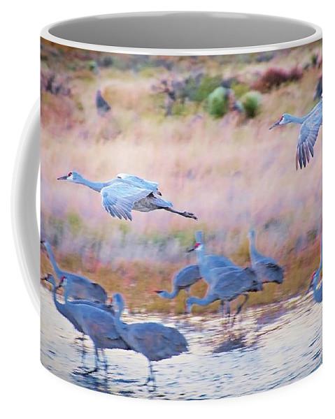 Southwest Coffee Mug featuring the photograph Evening Return, Sandhill Cranes by Zayne Diamond Photographic