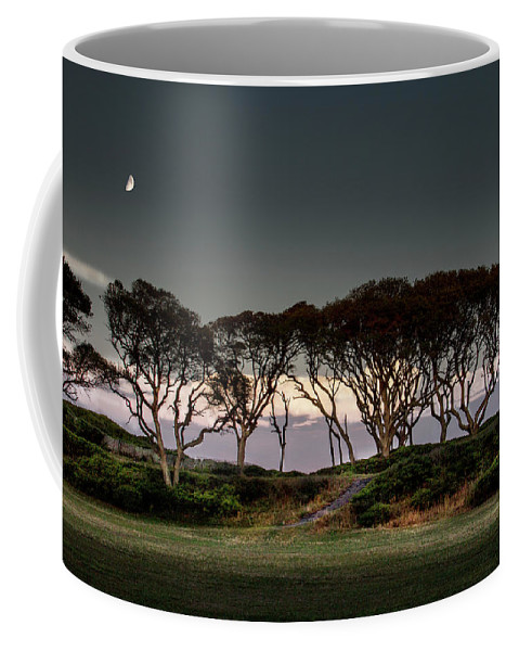 Fort Fisher Trees Print Coffee Mug featuring the photograph Dusk At Fort Fisher by Phil Mancuso