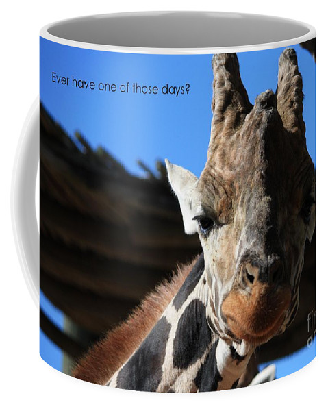 Giraffes Greeting Cards Coffee Mug featuring the photograph Ever Have One Of Those Days by Carol Groenen