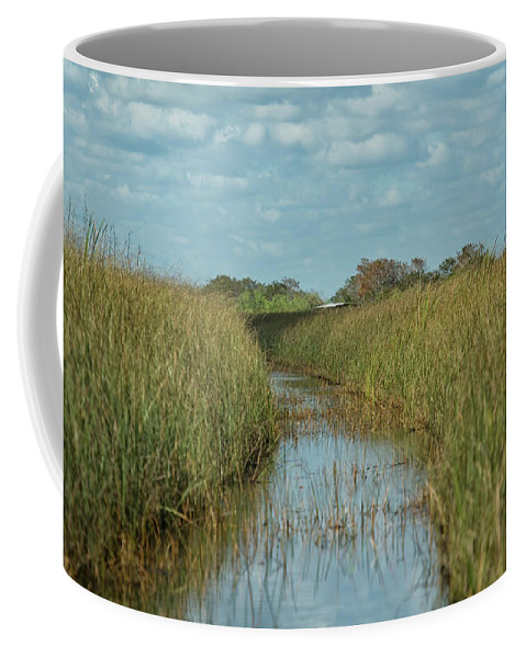 Everglades Coffee Mug featuring the photograph Everglades Trail by CR Courson