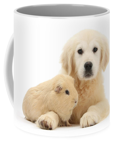 Golden Retriever Coffee Mug featuring the photograph Every Year Is Our Golden Wedding by Warren Photographic