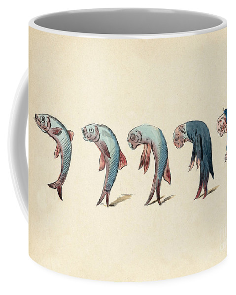 Historic Coffee Mug featuring the photograph Evolution Of Fish Into Old Man, C. 1870 by Wellcome Images