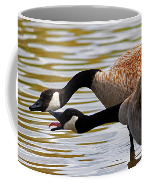 Canada Goose Coffee Mug featuring the photograph Excuse Me by Randall Ingalls