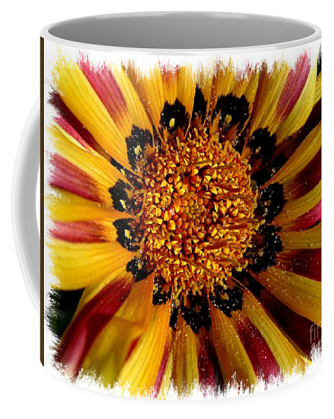 Daisy Coffee Mug featuring the photograph Explosion Of Color - Framed by Carol Groenen