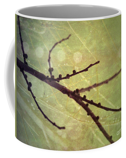 Branch Coffee Mug featuring the photograph Exposed by Tara Turner