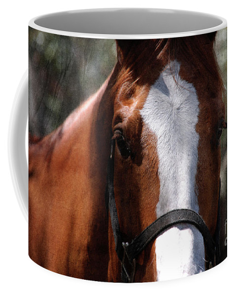 Horse Coffee Mug featuring the photograph Eye Contact by Susanne Van Hulst