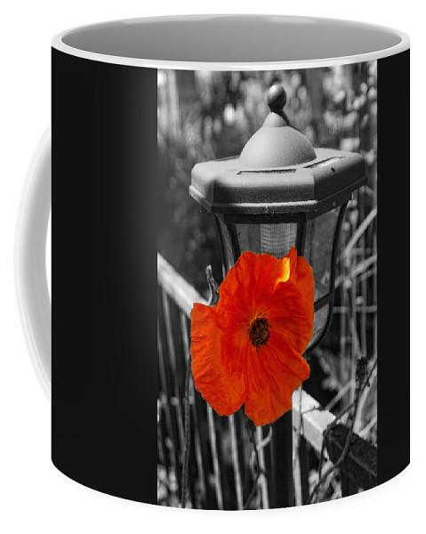 Poppy Coffee Mug featuring the photograph Eye Popper by Donna Blackhall