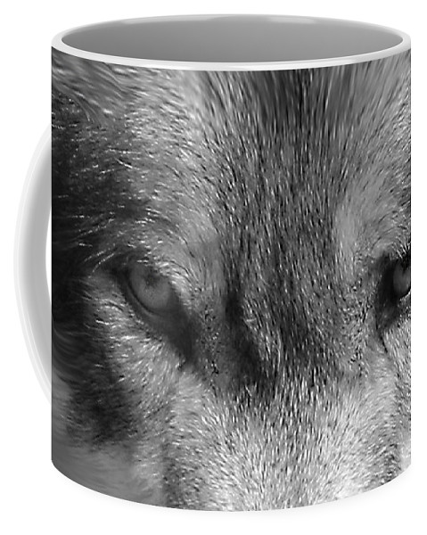 Wolf Canid Canus Lupis Wildlife Grey Gray Timberwolf Animal Mammal Photograph Photograhy Eyes Black White Desaturate Coffee Mug featuring the photograph Eyes Of The Wild by Shari Jardina