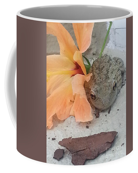 Toad Coffee Mug featuring the photograph F by Michelle S White