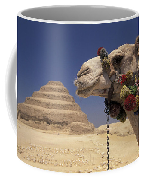 Pyramid Coffee Mug featuring the photograph Face Of A Camel In Front Of A Pyramid by Richard Nowitz