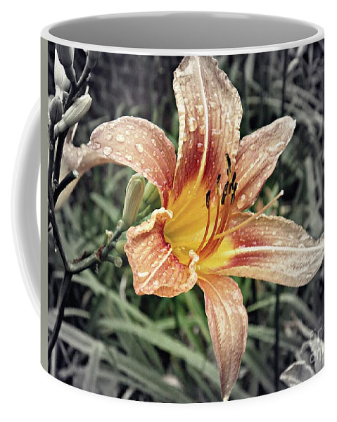 Lily Coffee Mug featuring the photograph Fading Memory by Sarah Loft