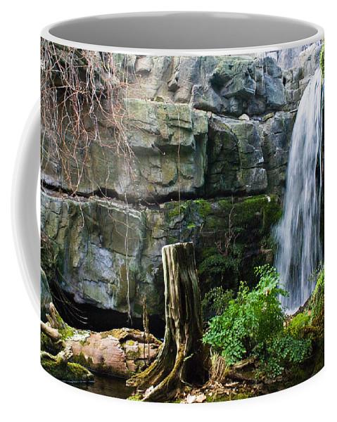 Waterfall Coffee Mug featuring the photograph Fairy Waterfall by Douglas Barnett
