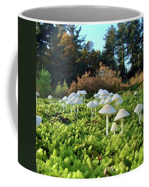 Mushrooms Coffee Mug featuring the pyrography Fairytail Mushrooms by Patricia LaHuis