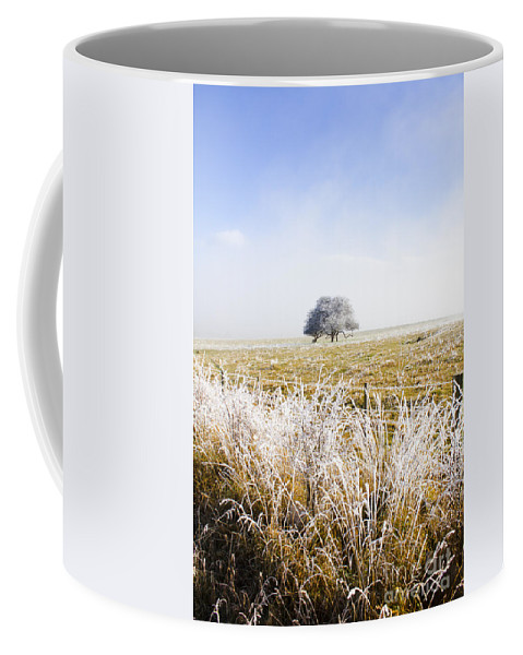 Artwork Coffee Mug featuring the photograph Fairytale Winter In Fingal by Jorgo Photography - Wall Art Gallery