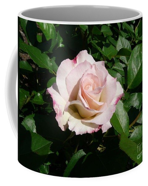 Rose Coffee Mug featuring the photograph Fait Accompli by Kendall Eutemey