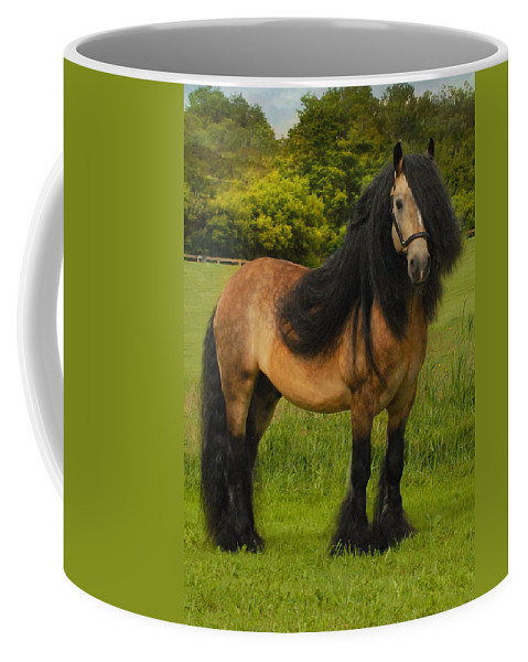 Horses Coffee Mug featuring the photograph Falcon C3 by Fran J Scott