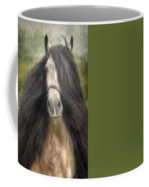Horses Artwork Coffee Mug featuring the photograph Falcon by Fran J Scott