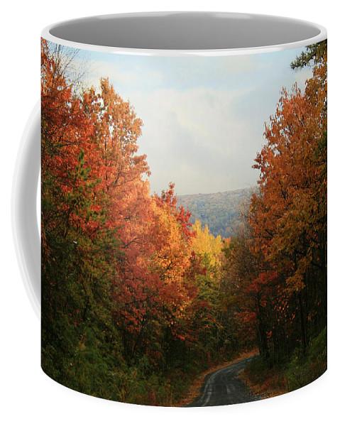 Autumn Coffee Mug featuring the photograph Fall Along Greenland Road by Lori Deiter