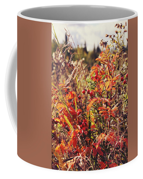 Coffee Mug featuring the photograph Fall Around by The Artist Project