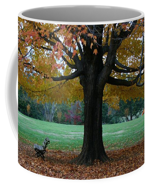 Maymont Coffee Mug featuring the photograph Fall At Maymont by Tina Meador