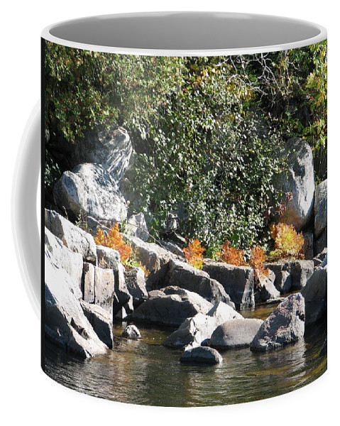 Creek Coffee Mug featuring the photograph Fall At The Creek by Kelly Mezzapelle