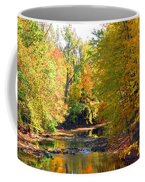 Fall Color Coffee Mug featuring the photograph Fall Color On Creek 5597 by Jack Schultz