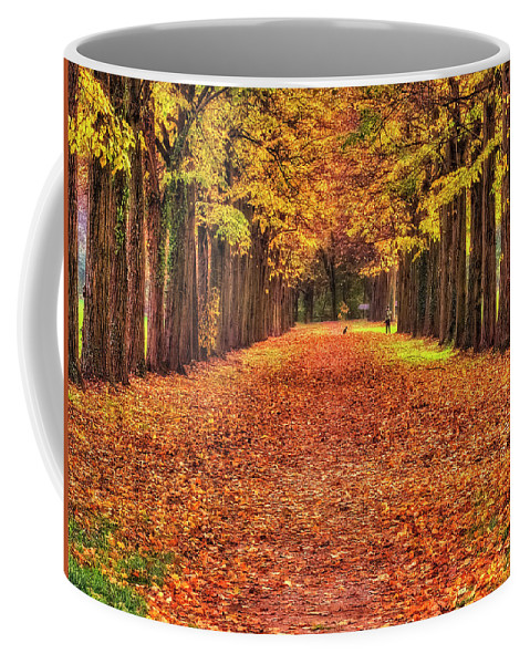 Color Efex Pro Coffee Mug featuring the photograph Fall Colors Avenue by Roberto Pagani