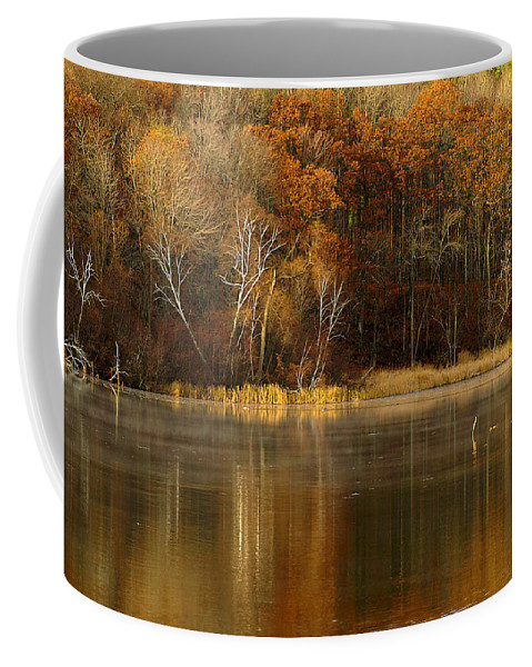 Lake Coffee Mug featuring the photograph Fall Cove by Thomas Young