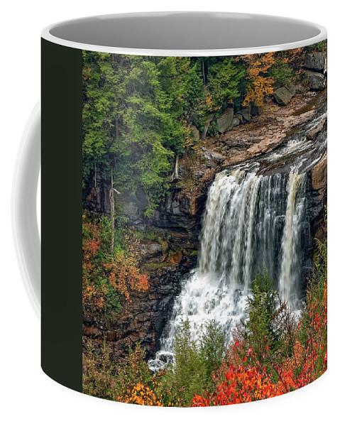 West Virginia Coffee Mug featuring the photograph Fall Falls 2 by Steve Harrington