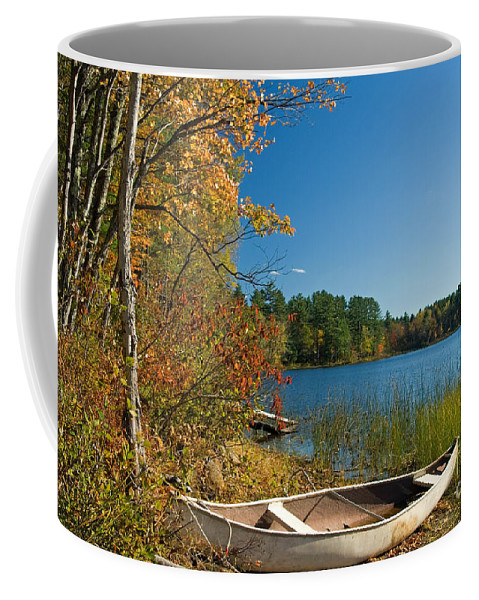 Fall Coffee Mug featuring the photograph Fall Fun by Alana Ranney