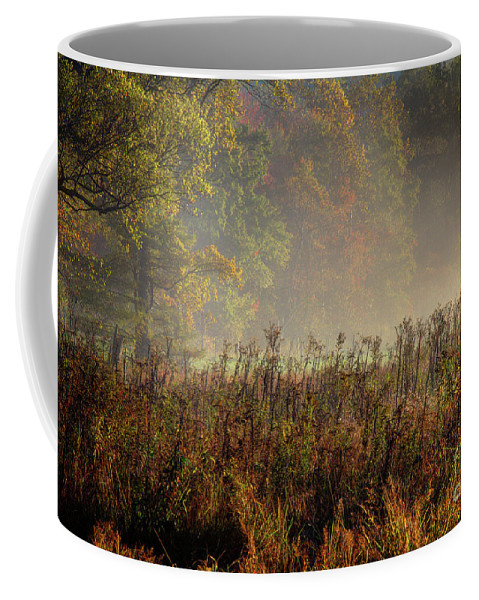 Coffee Mug featuring the photograph Fall In Cades Cove by Douglas Stucky