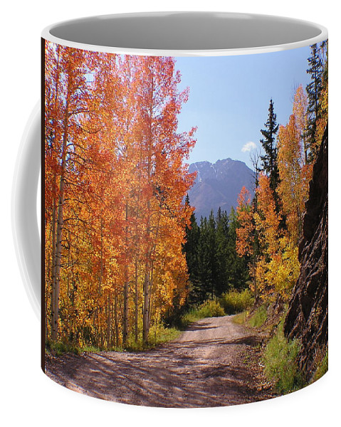 Trees Coffee Mug featuring the photograph Fall In Colorado by Carol Milisen