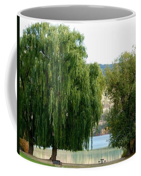 Kaloya Park Coffee Mug featuring the photograph Fall In Kaloya Park 6 by Will Borden
