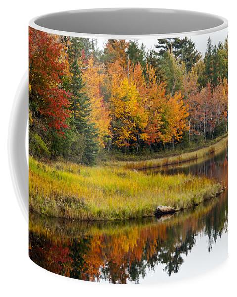 Maine Coffee Mug featuring the photograph Maine Fall by Glenn Gordon