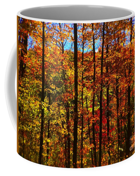 Barbara Griffin Coffee Mug featuring the photograph Fall In Ontario Canada by Barbara Griffin