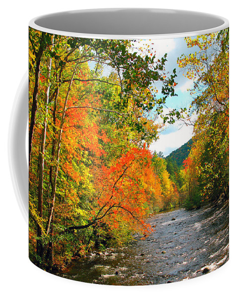 Fall Coffee Mug featuring the photograph Fall In The Smokey Mountains by Brittany Horton