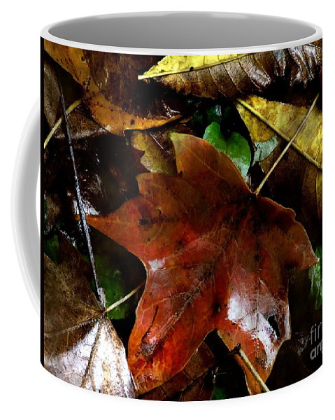 Autumn Coffee Mug featuring the photograph Fall Into Fall by RC DeWinter
