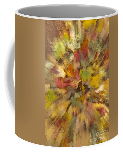 Zion Coffee Mug featuring the photograph Fall Leaves Abstract by Sandra Bronstein
