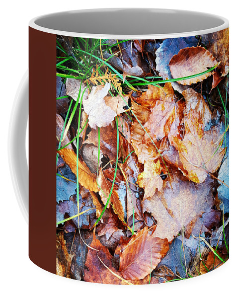 Fall Coffee Mug featuring the photograph Fall Leaves by Alex Sowinski