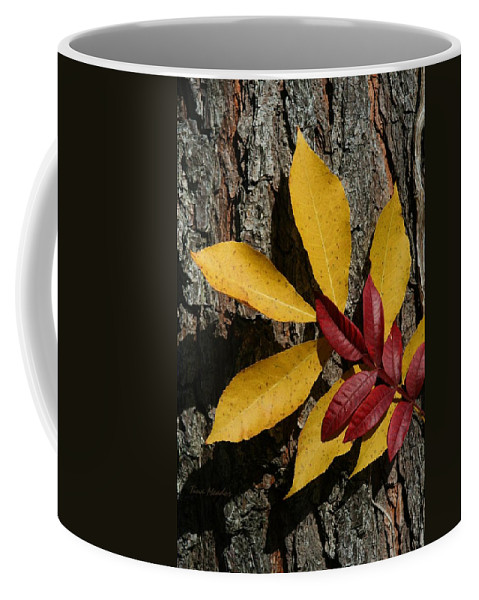 Fall Coffee Mug featuring the photograph Fall Leaves by Tina Meador