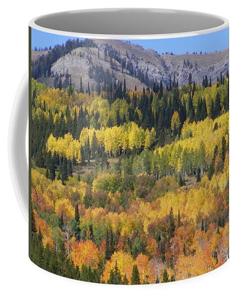 Fall Coffee Mug featuring the photograph Fall On The Greys River by DeeLon Merritt