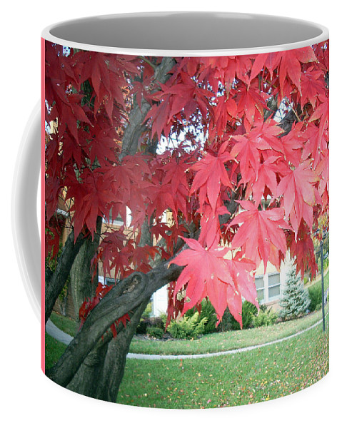 Fall Pictures Coffee Mug featuring the photograph Fall Reds by Karin Dawn Kelshall- Best